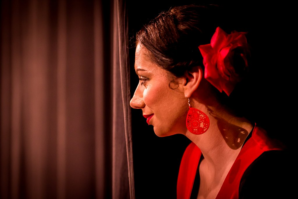 Flamenco dancer with rose in hair